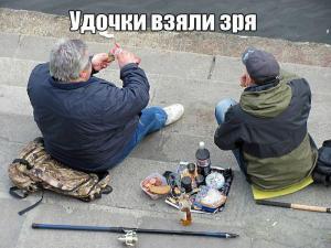 foto-prikoly-qhstsb43z86o-001.jpg