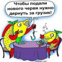 костя-кефалист