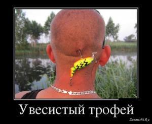10736-Krupnaya-ryba.jpg