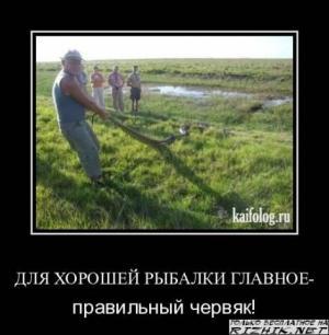 med_gallery_2_137_48967.jpg