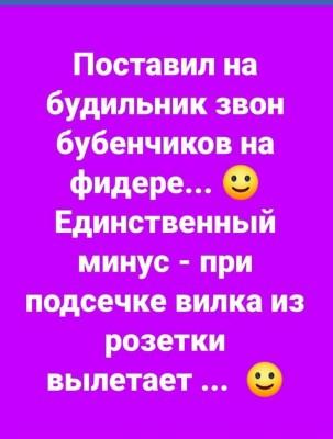57199461_804468246595074_3399292677198446592_n.jpg
